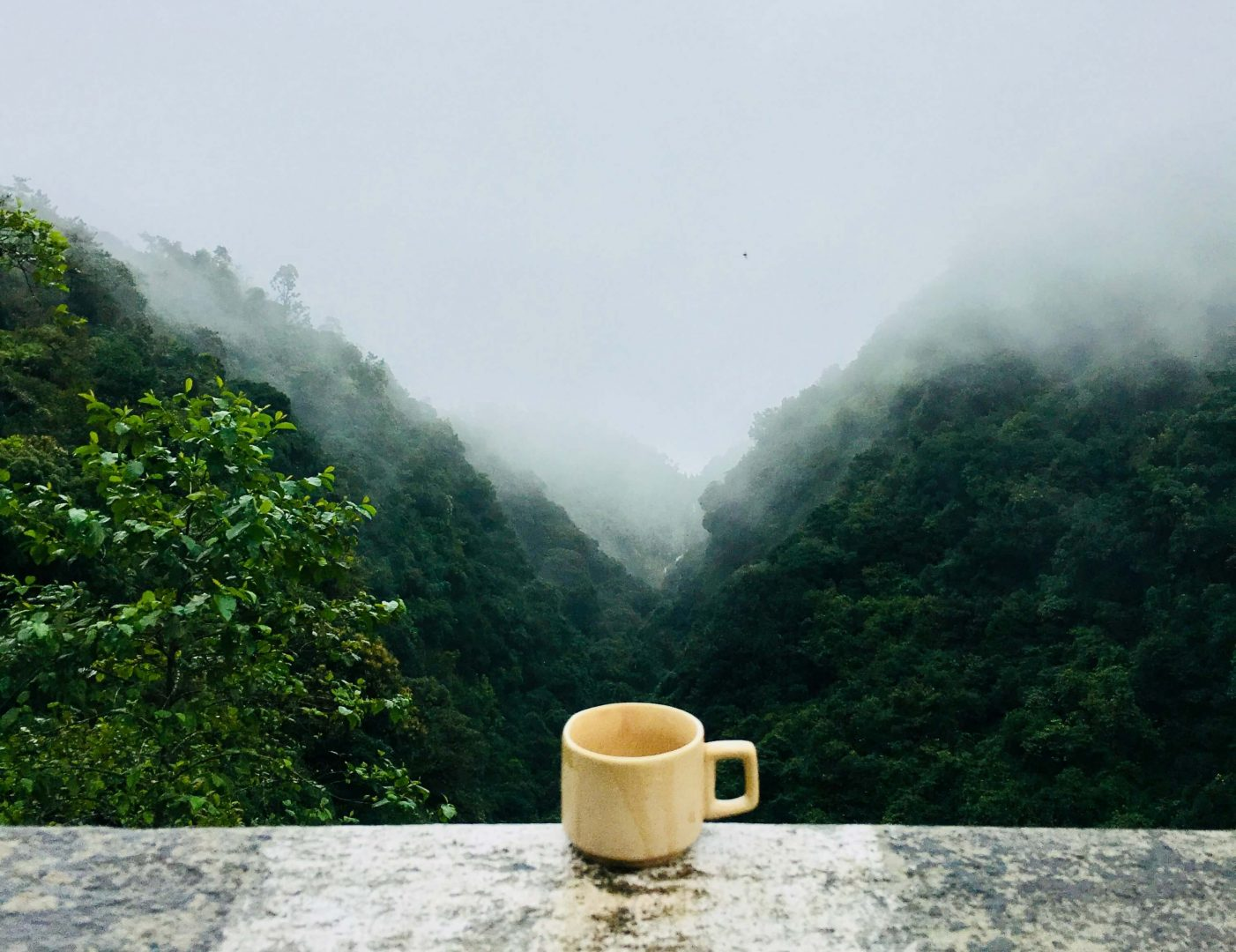 Bulletproof Coffee –Mythos oder Wunderwaffe für Abnehmen, Fitness & Biohacking